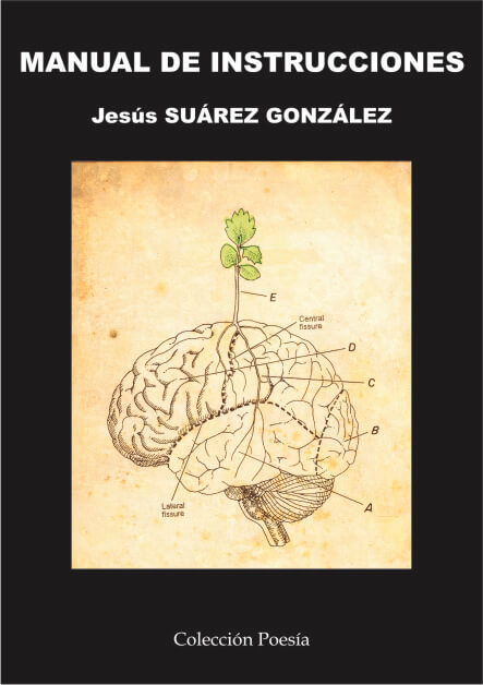 MANUAL DE INSTRUCCIONES – Jesús SUÁREZ GONZÁLEZ